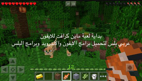 Minecraft game for iphone